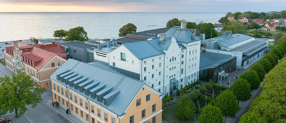 Organisation for Campus Gotland